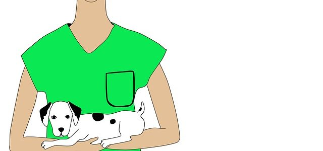 Die Leistungen der Hundekrankenversicherungen
